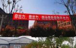 盐官镇以百日攻坚推进美丽城镇生态环境建设