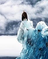冰冻三万年:世上最古老冰山