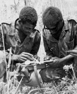 纳米比亚独立战争