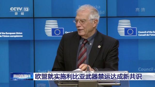 欧盟各国就实施利比亚武器禁运达成新共识