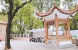 """宁波北仑这个老小区打造出""""高颜值""""宜居小区"""