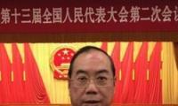 """海外列席侨胞为两会建言献策 外媒:""""中国梦""""?#24425;恰?#20392;胞梦"""""""