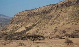 安波塞利国家公园