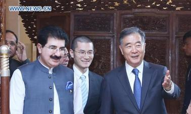 China's top political advisor holds talks with Pakistan's Senate chairman