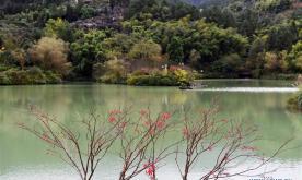 Scenery of Wansheng Shilin scenic area in China's Chongqing