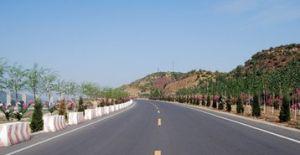 芹池镇公路