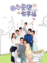因为爱情有幸福 DVD版