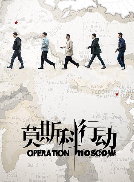 莫斯科行动 DVD版