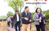 2019中國句容茶文化論壇精彩開講