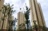 杭州上半年新增货币补贴保障家庭3万余户
