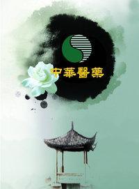 中华医药 2014