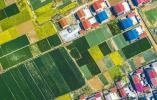 【新时代 新作为 新篇章】徐州:深化土地制度改革 同心同频唱响乡村振兴大合唱