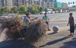七旬老太挑80斤柴禾过马路,民警看不下去了
