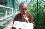 延参法师为寿光蔬菜代言:吃出老家的味道,靠谱的幸福!