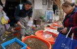 镜头 又是一年尝鲜时,河蚌、螺蛳爬上南京餐桌